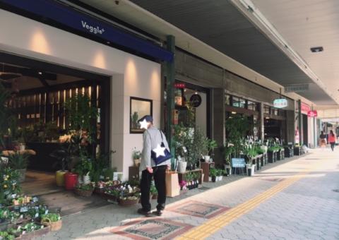 赤松種苗 天王寺 江戸時代 ベジープラス カフェ オープン