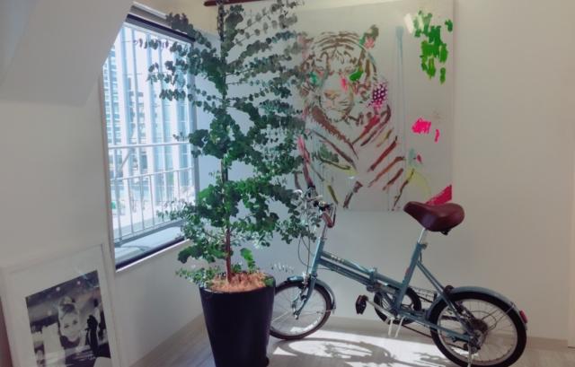 ユーカリ 観葉植物 オフィス
