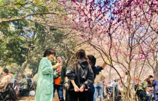 大阪城 花見 桜 BBQ