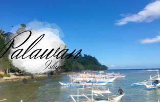 パラワン島 フィリピン 海外研修